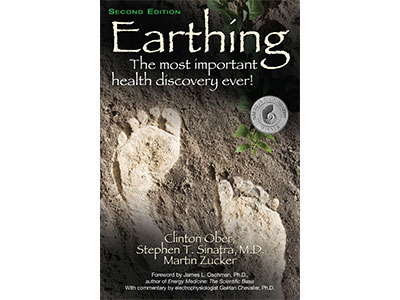 Earthing book (in English)